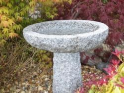 Small Natural Bird Bath