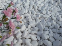 Snow white pebbles 10-20mm